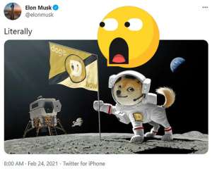 elon musk porta doge coin sulla luna